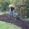 Thumbnail image for How to buy the best garden tiller
