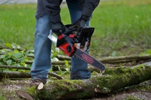 Oregon chainsaw powernow CS250E has a built in chain sharpener