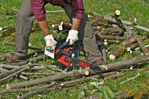 Oregon chainsaw powernow CS250E logs